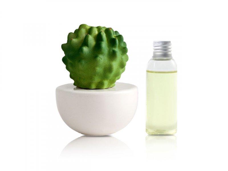 Natura OggiDiffusore Ambiente Cactus Piccolo White 50 ML CA005